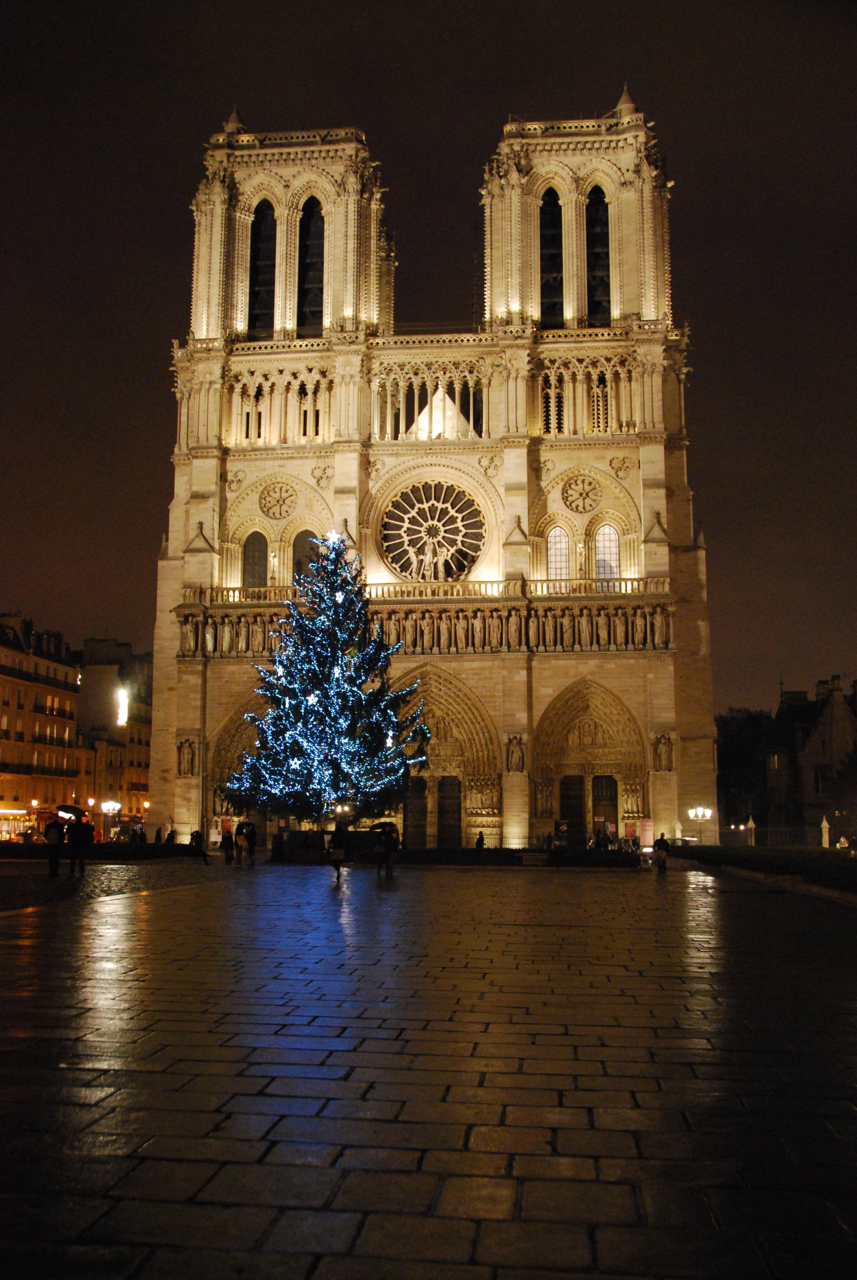 Christmas in the City of Light - Paris, France - Follow the Flammias