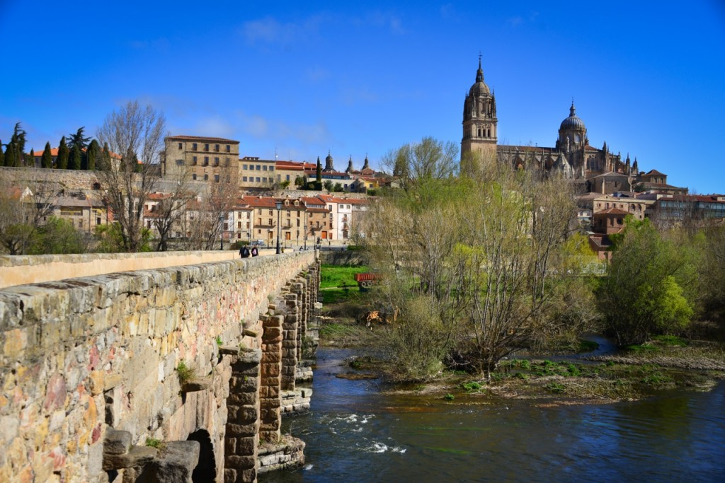 View of Salamanca's historical center from the bridge