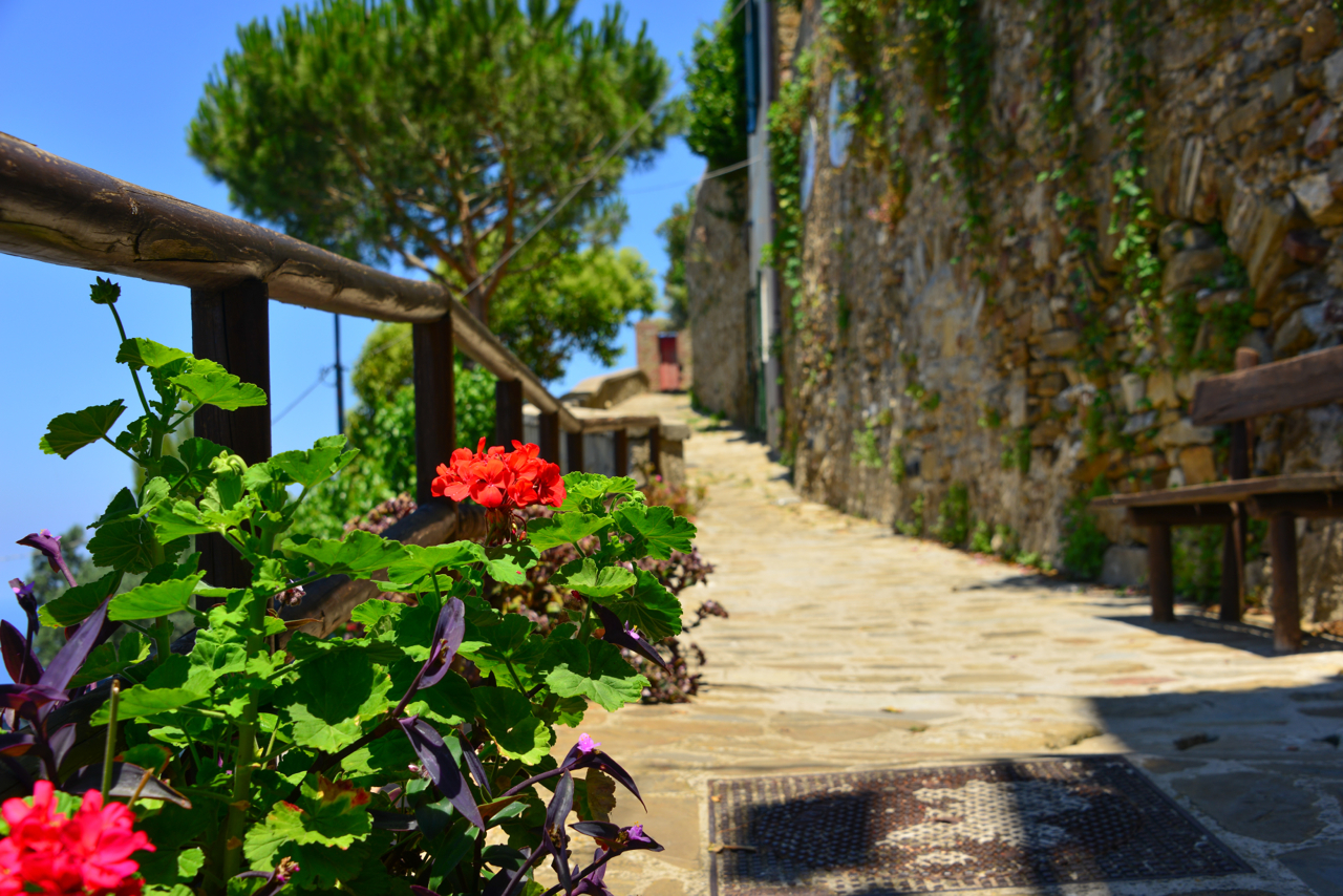 We parked at the bottom of Castellabate and took the winding path to the top