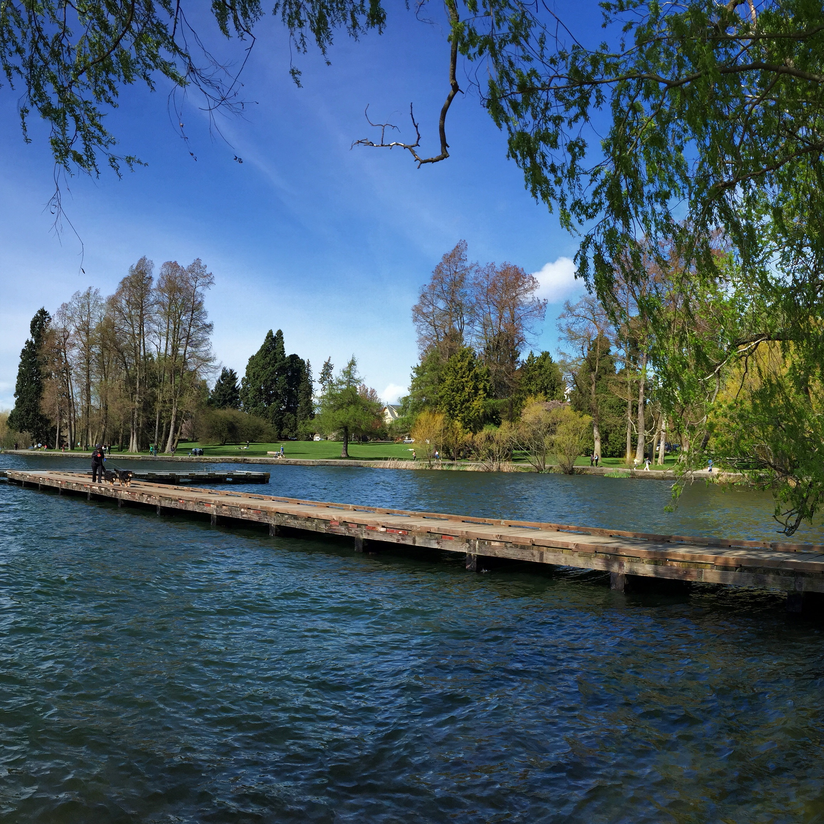 Green Lake dock