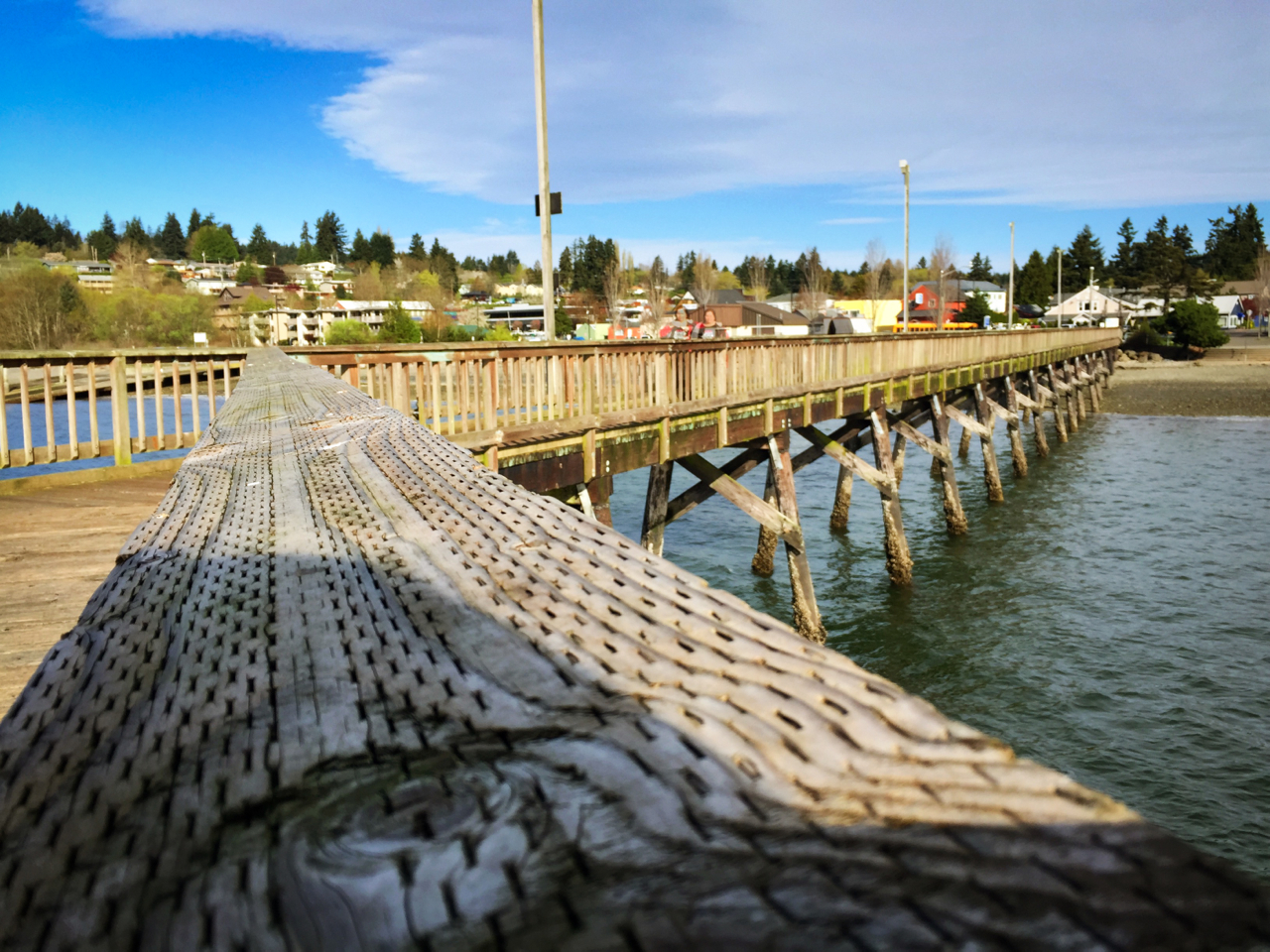 The Silverdale boardwalk