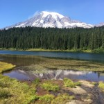 Stella's First (mini) Road Trip – Mount Rainier
