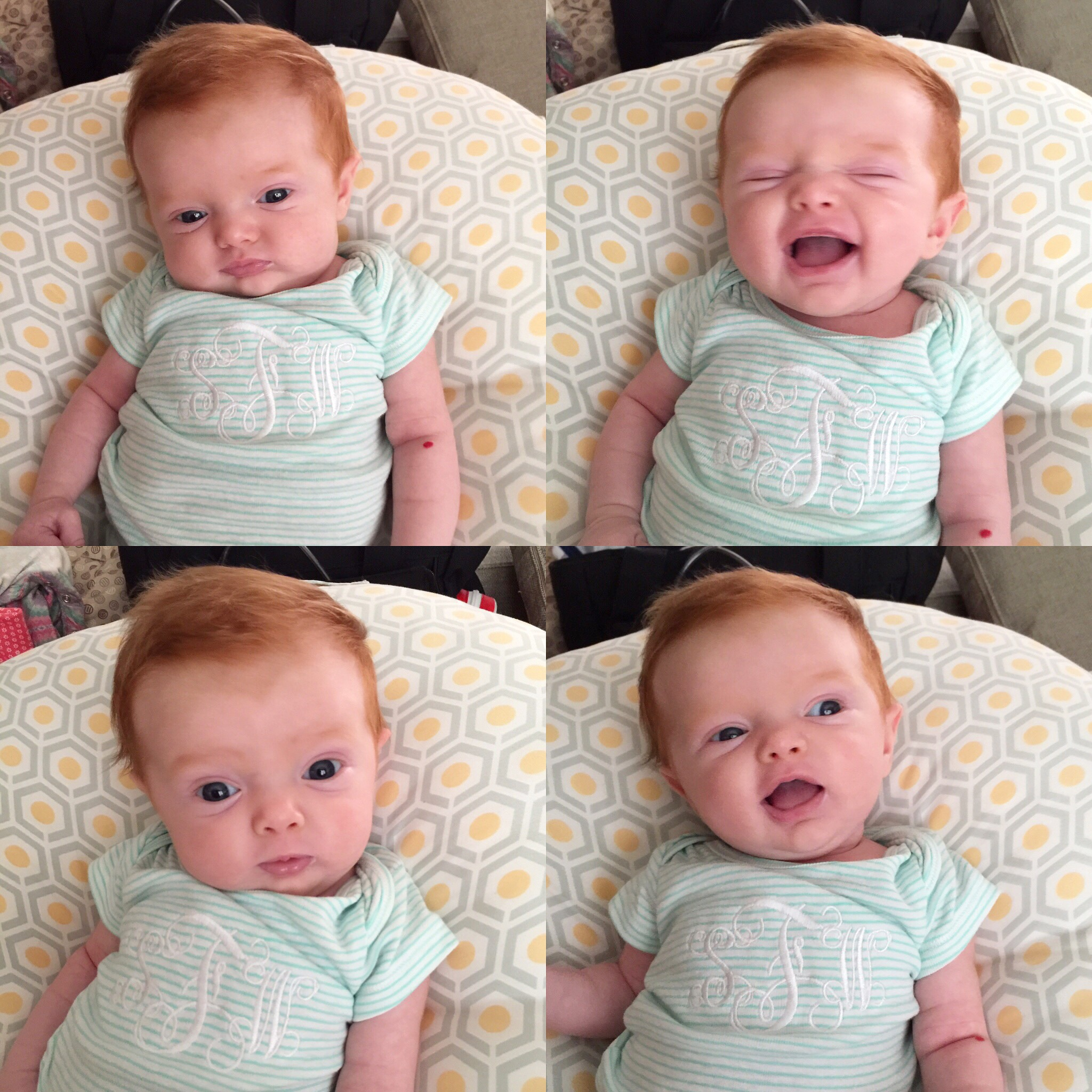 The many faces of Stella