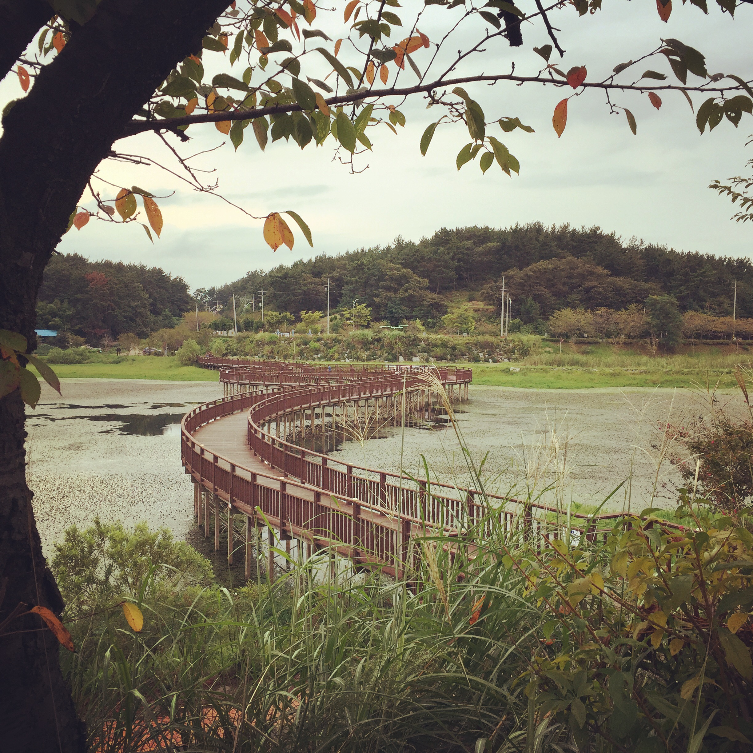 Another bridge at Eunpa Lake Park