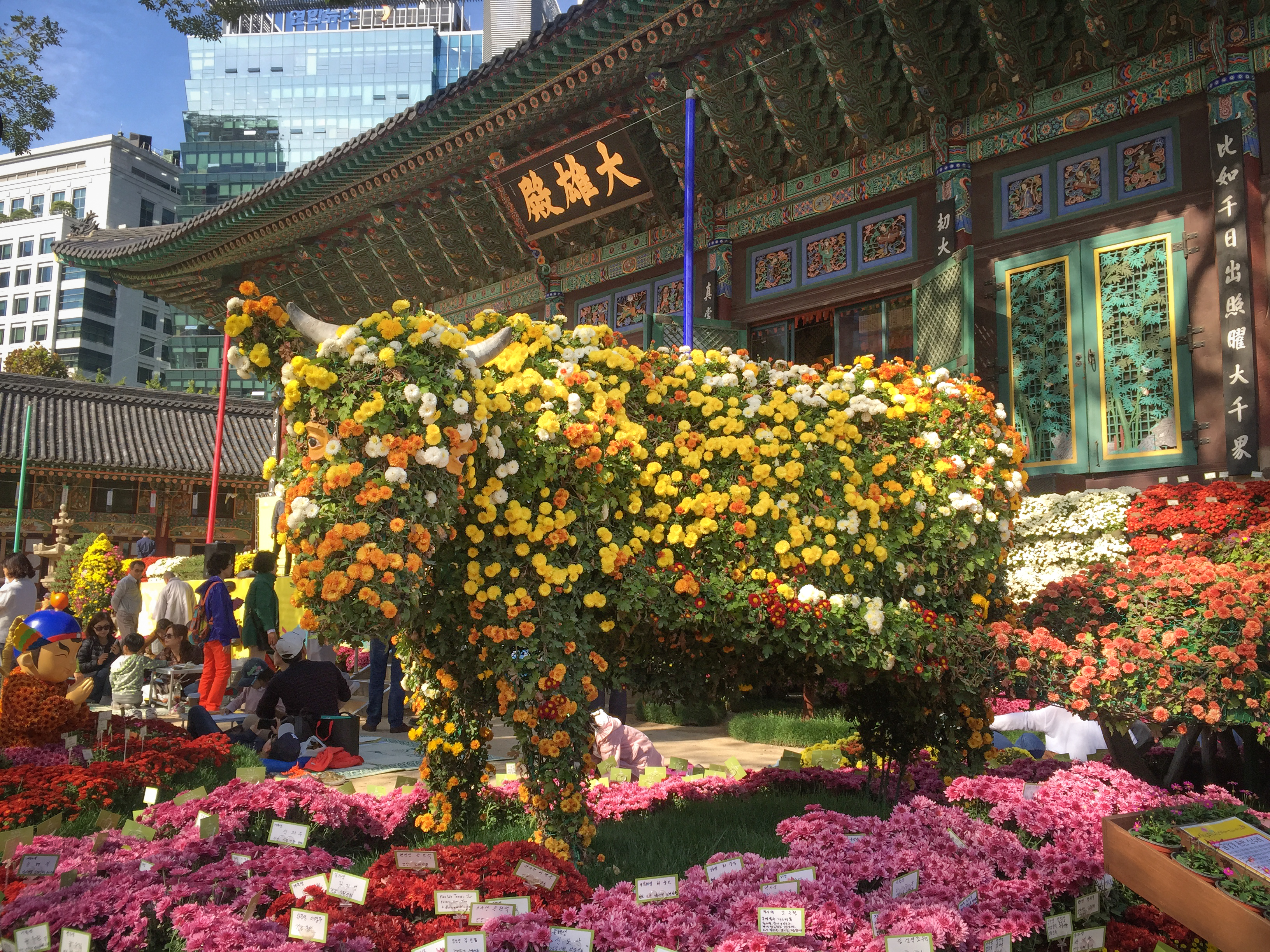 The flower cow